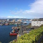 Harbour scenes September 2017