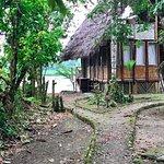 Cotococha Amazon Lodge รูปภาพ