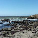 Photo of Moonstone Beach