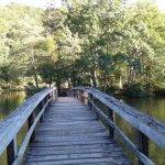 walkway over lake