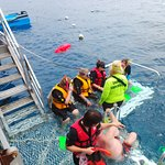 Our ALARA group gets some last minute guidance from Reef Magic's Snorkelling Supervisor...