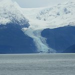 Foto de 26 Glacier Cruise by Phillips Cruises and Tours