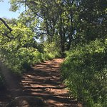 Off the beaten path. A non-paved, nicely treed option