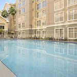 Photo of Homewood Suites Orlando-International Drive/Convention Center