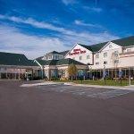Hilton Garden Inn St Louis Airport Foto