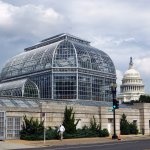 Photo de United States Botanic Garden