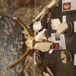 Thomas Condon Paleontology Center-billede