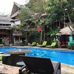 Serenity Eco Guesthouse and Yoga의 사진