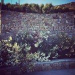 Photo de Myconian Villa Collection