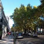 Photo of Avenida da Liberdade