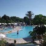 pool area of the Avanti