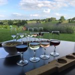 Bilde fra Three Choirs Vineyards