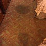 Photo de Baymont Inn & Suites Murfreesboro