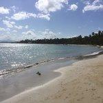 Photo de Playa El Portillo