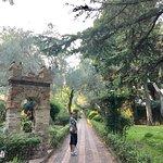 Photo of Villa Comunale