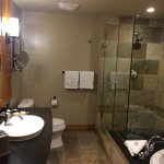 Bathroom (appreciable : tub AND shower)