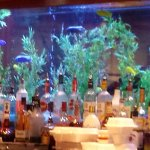 Great view at the bar of the Cheddars Fish tank.