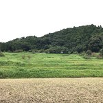 Photo of Oyama Rice Terrace
