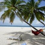 Photo de Fihalhohi Island Resort