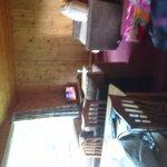 DSC_1508_large.jpg