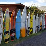 Surfboards along the road near the store
