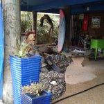 Photo de The Blue Water House