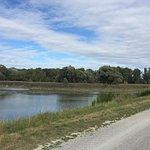 Photo of Danube Bike Path (Donauradweg)