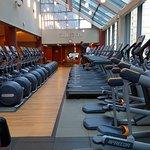 Gym - Cardio equipment