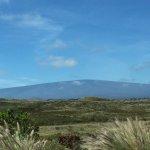 View toward Mauna Loa