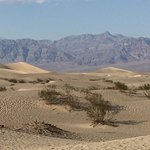 Photo of Mesquite Flat Sand Dunes