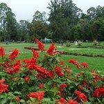 Un parc payant sans grand intérêt comme le montre la photo