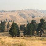 Triple Creek Ranch Foto