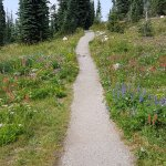 Meadows in the Sky Parkway