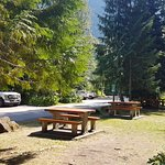 Giant Cedars Boardwalk Trail picnic tables & amenities