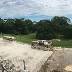 Foto de National Park of Palenque