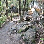 East Bluffs Trail