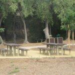 Picnic Area, Jose Higueara Adobe Park, Milpitas, Ca