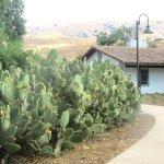 Adobe and Cactus, Jose Higueara Adobe Park, Milpitas, Ca