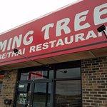Photo of Ming Tree Chinese Restaurant