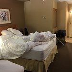 spacious room, comfortable beds and pillows, had a great sleep