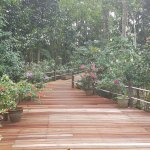 Photo de Borneo Nature Lodge