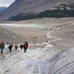 Columbia Ice Field glacier back to carpark