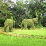 ..elephants on Chalsa Hilltop...