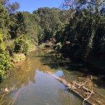 Broken River Mountain Resort Eungella Foto