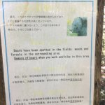 Higashiyama Walking Course Foto