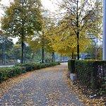Courtyard Düsseldorf Seestern Foto