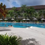 Pool at Tropicale Section
