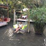 Photo of Paradise Cafe