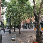 The beautiful tree lined streets of Pioneer Square