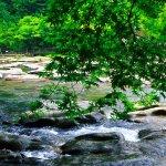 夏の関之尾滝・その5